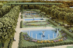 "Complex of garden art, landscape architecture and flower decoration. Park ""Tushinsky"""