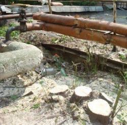 Кто выдал билет? Около дома Высоцкого под застройку вырублено более 50 деревьев