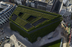 Зеленый лабиринт на фасаде