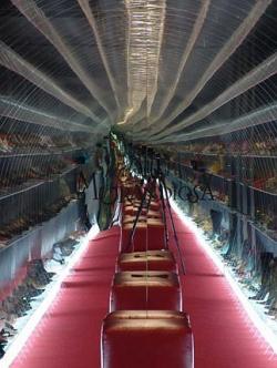 Обувной салон Mania Grandiosa