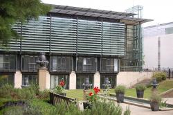 Американский институт Ротермиэ