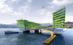 «Острова». Концептуальные предложения по освоению акватории г. Сочи