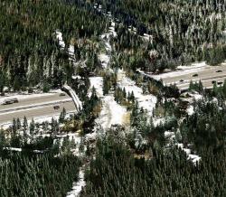 Надземный переход шоссе для диких животных