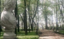 Стройка в Летнем саду в Петербурге оказалась реконструкцией