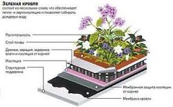 Совсем зеленый. Экологический дом сможет потреблять в четыре раза меньше тепла и в два раза меньше воды, чем обычный
