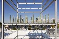 Башня кактусов