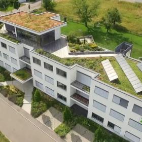 Зеленые крыши Штутгарта: обязанность для девелоперов и экономия для города