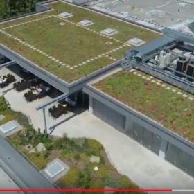 Проект Zinco: озеленение крыши посреди индустриального парка