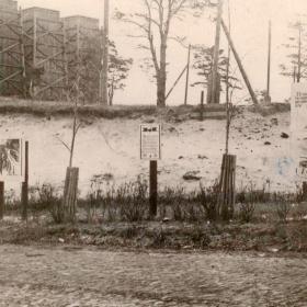 Как ковалась победа: вклад Борского стекольного завода