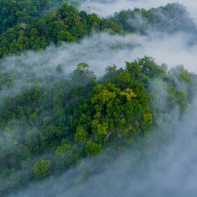 VELUX Group обеспечит нейтрализацию своего углеродного следа за всю историю существования компании согласно плану «Жизнь без выбросов CO2»