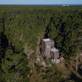 Дом между деревьев