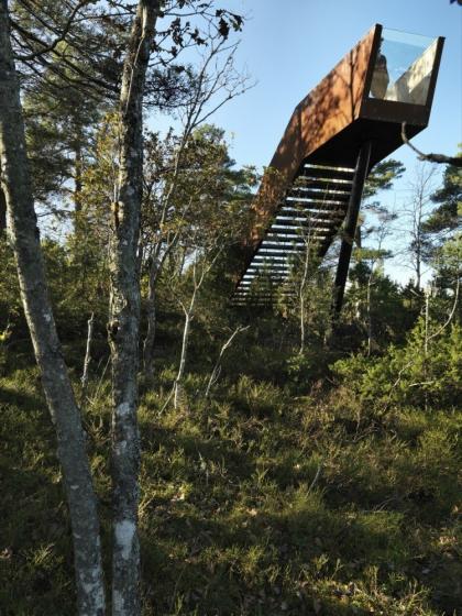 Смотровая платформа «Лесная лестница» в Стокке