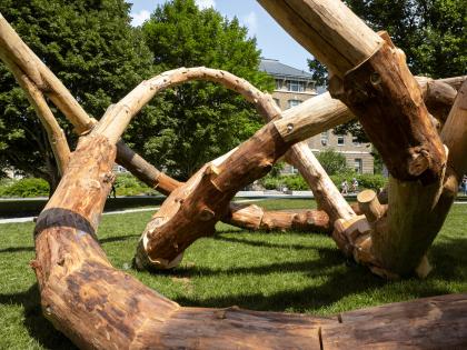 Технология использования древесных отходов – на примере «петляющей» инсталляции