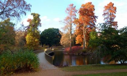 Переправа Сэклера в ботаническом саду Кью в Лондоне. Фото: Jonathan Billinger via Geograph. Лицензия CC BY-SA 2.0