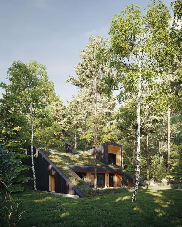 Горка Дом © Snegiri Architects