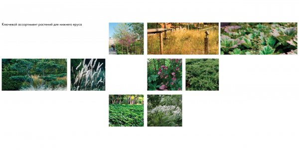 EVER residential complex. The landscaping project. Copyright: © GAFA