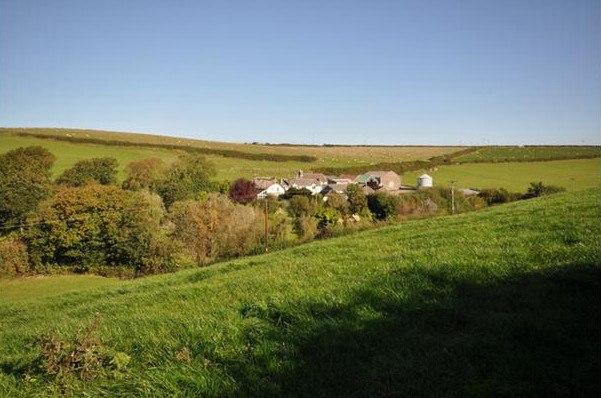 Место будущего строительства эко-поселка Дэмьена Херста. Фото Roger A. Smith