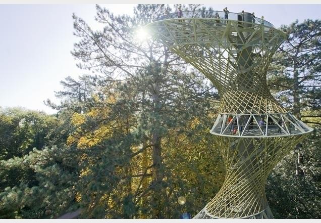 Проект для бразильского научного центра в джунглях Амазонии. Изображение Marks Barfield Architects