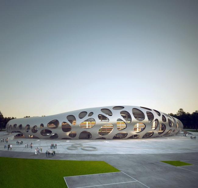 Стадион клуба БАТЭ в Борисове. Изображение предоставлено Ofis Arhitekti