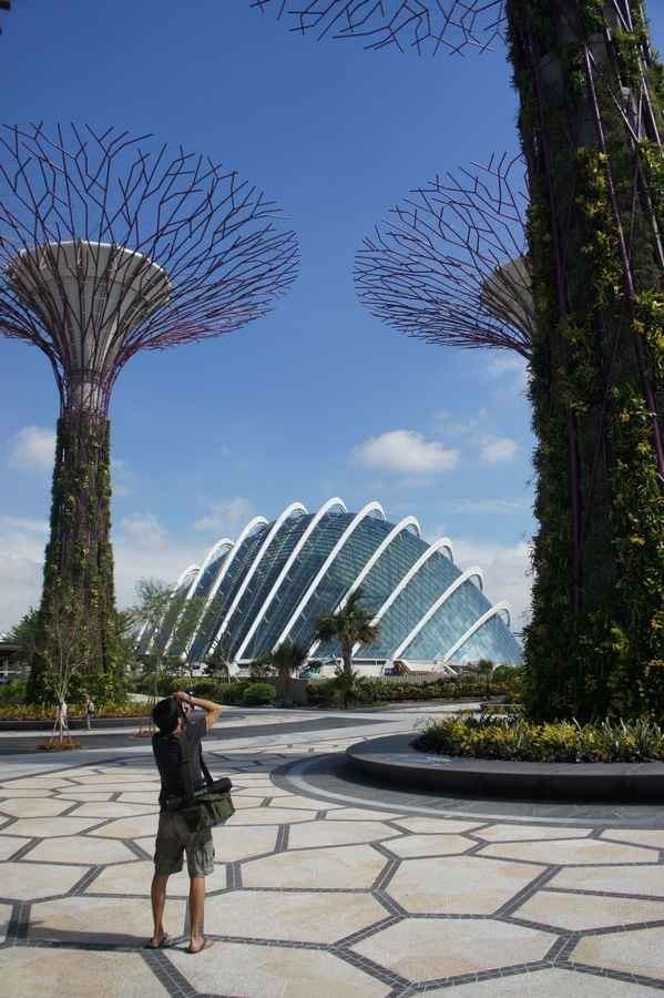 Оранжереи в парке Марина-Бэй-Саут в Сингапуре
