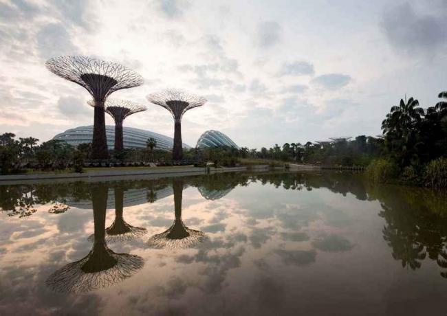Парк Bay South (комплекс Gardens by the Bay) в Сингапуре