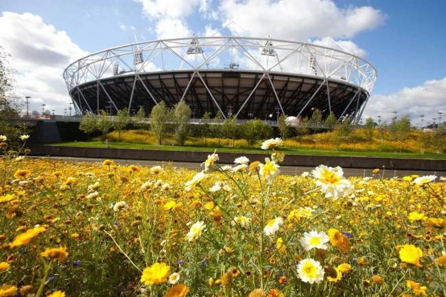 Олимпийский парк с главным стадионом © London2012