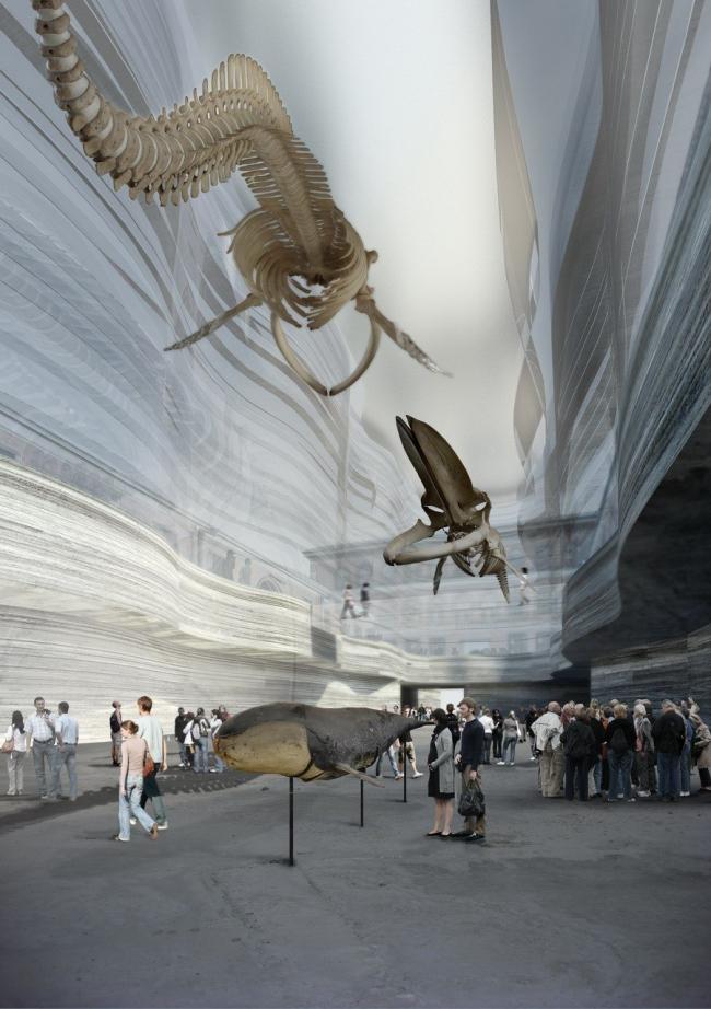 Музей естественной истории - новое здание © Lundgaard & Tranberg Arkitekter