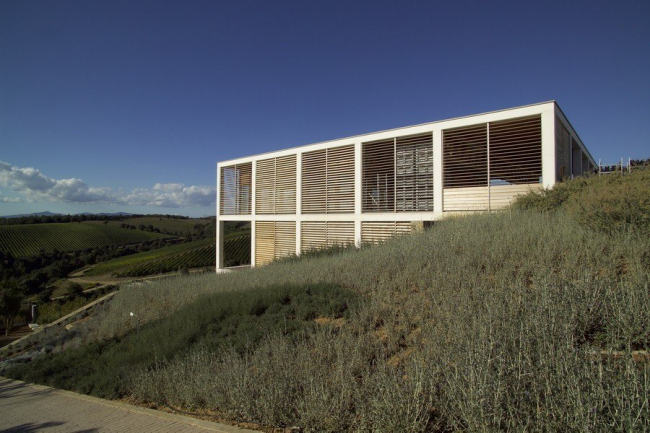 Винодельня Collemassari в Чиниджано, Гроссето. Эдоардо Милези, 2005. Фото предоставлено Biennale di Venezia