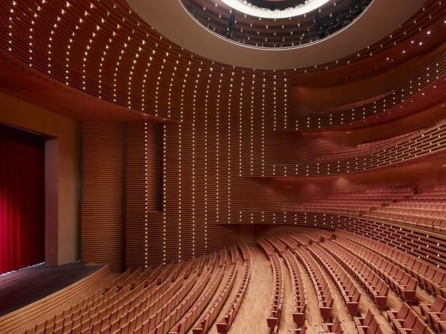 Большой театр в Тяньцзине. Оперный зал. Фото © Christian Gahl. Предоставлено gmp