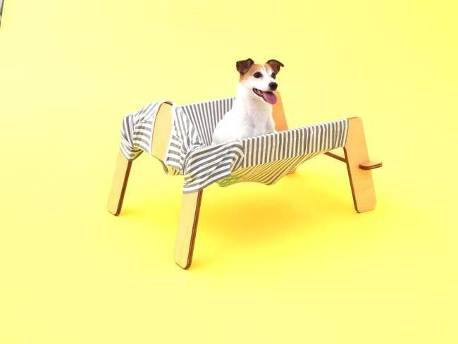 Torafu architects для джек-рассел-терьера. Предоставлено Architecture for Dogs