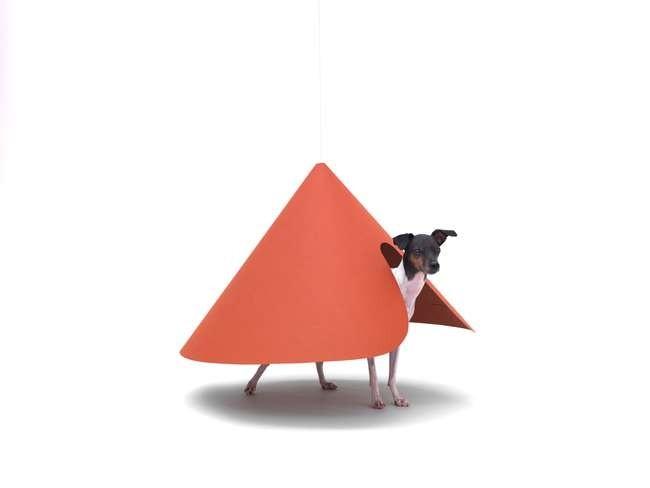 Hara design institute для японского терьера. Предоставлено Architecture for Dogs