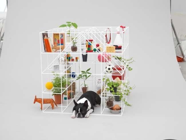 Со Фудзимото для бостон-терьера. Предоставлено Architecture for Dogs