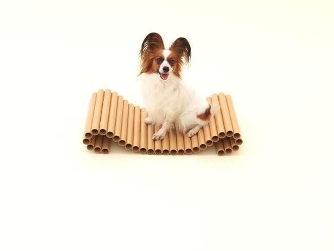 Шигеру Бан для той-спаниеля. Предоставлено Architecture for Dogs