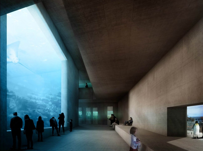 "Проект Morger + Dettli Architekten ""Zooz"". 4-е место"