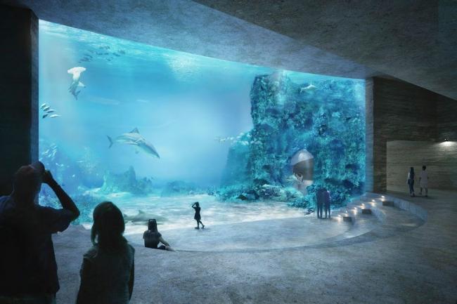 Проект Boltshauser Architekten «Морской утес» (Seacliff). 1-е место