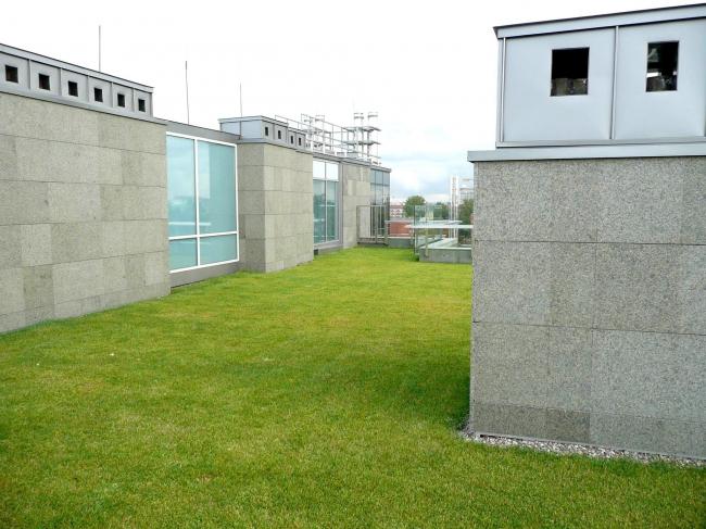 ЖК Diadema Club House: зеленая кровля пентхауса на одной из четырех семиэтажных башен комплекса. Фото предоставлено компанией «ЦинКо РУС».