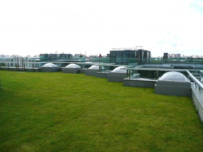 ЖК Diadema Club House: зеленая кровля на одной из четырех семиэтажных башен комплекса. Фото предоставлено компанией «ЦинКо РУС».