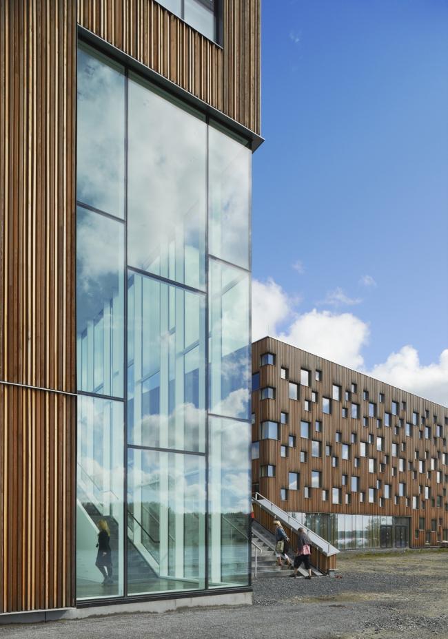 Музей искусств Университета Умео © Åke E:son Lindman