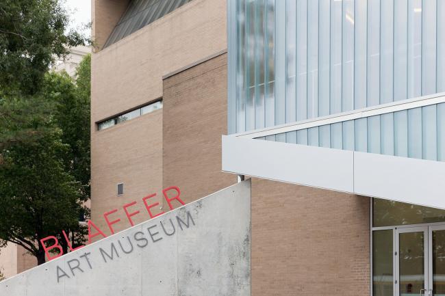 Реконструкция Музея изобразительных искусств Блаффер © Iwan Baan
