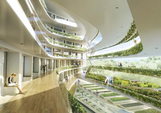 «Зеленая школа» в Копенгагене. Изображение предоставлено 3XN