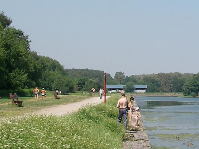Рис. 4. Парк Кусково, лето