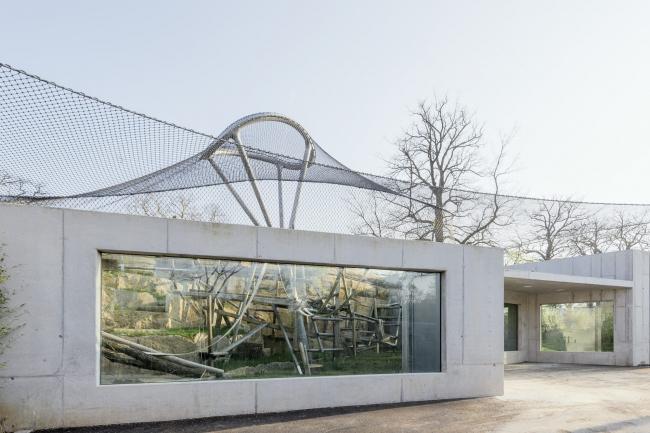 Обезьянник зоопарка «Вильгельма» © Brigida González