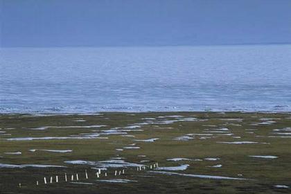Остров Хершел, Канада. Кладбище китобоев
