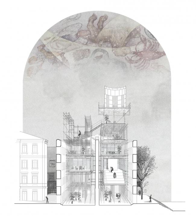 Проект Анастасии Вайнберг