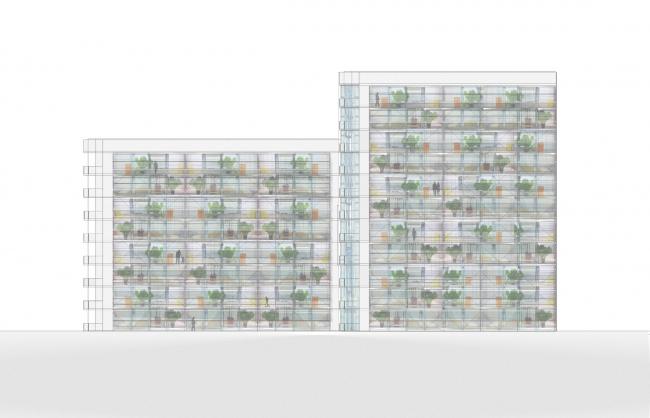 Фасад. Дом-теплица. Проект Аси Котенко