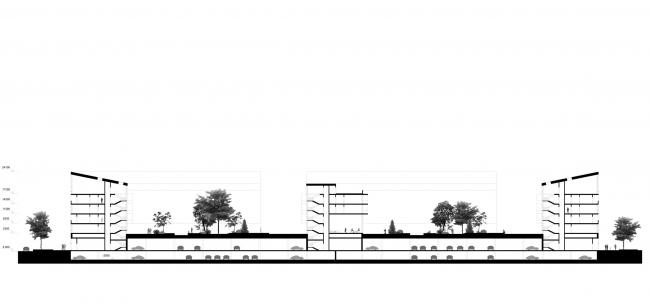 Разрез. Кварталы арендного жилья. Проект Егора Королева