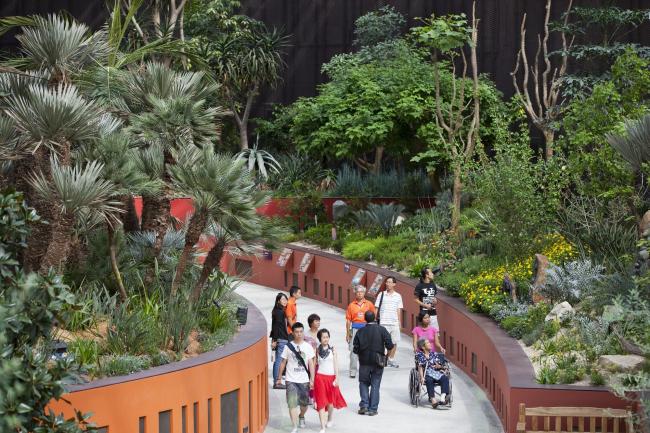 Оранжереи в парке Марина-Бэй-Саут в Сингапуре © Craig Sheppard