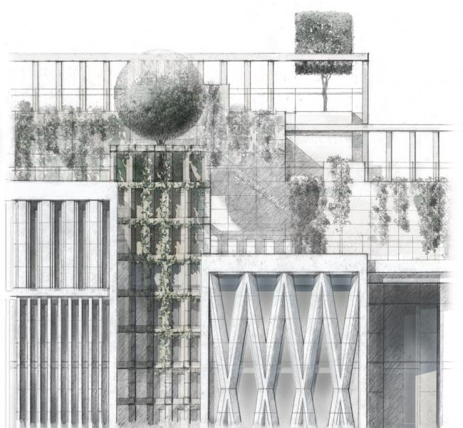 Фрагмент лицевого фасада жилого корпуса. «Верховые сады»