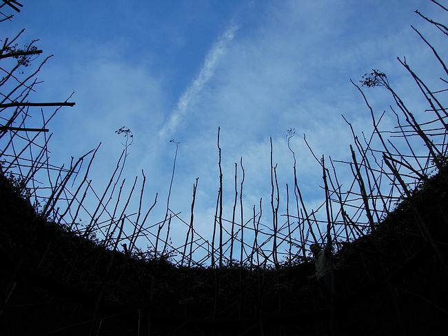 Вид на небо из «Вавилонской башни». Фотография Юлии Тарабариной