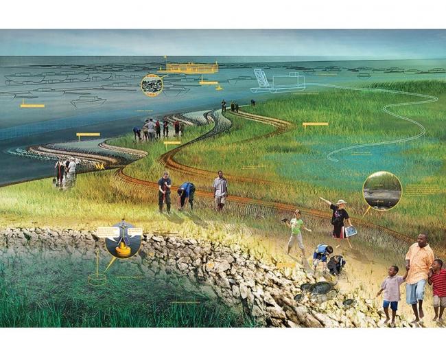 Проект SCAPE/Landscape Architecture